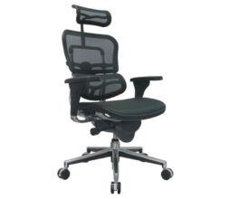 cadeira-presidente-ergohuman-01