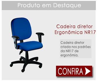 Cadeira Diretor Ergonômica para escritório NR17