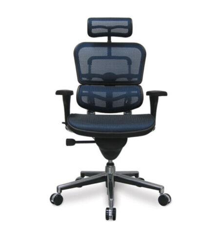 cadeira-presidente-ergohuman-02